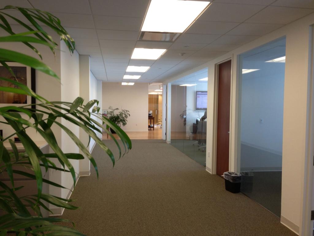 Alterna-Office-Interior